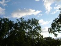 20090919-1.jpg